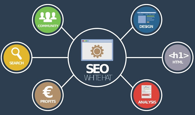 White Label SEO for Business