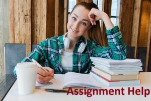 Write My Assignment Help Online